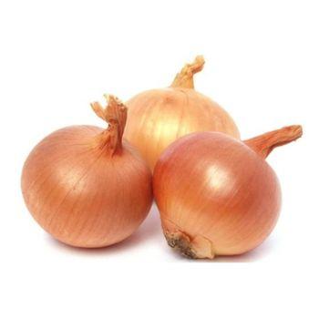Onion Kg