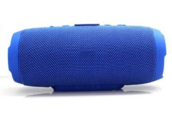 Artisan Blizzard Wireless Bluetooth Speaker